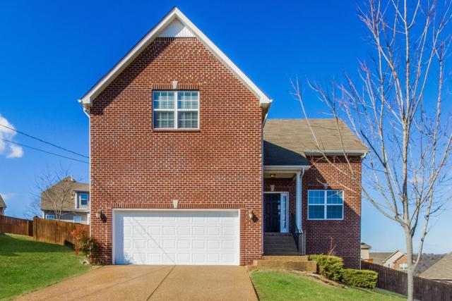804 Ottoe Ct, Brentwood, TN 37027 (MLS #2006767) :: REMAX Elite