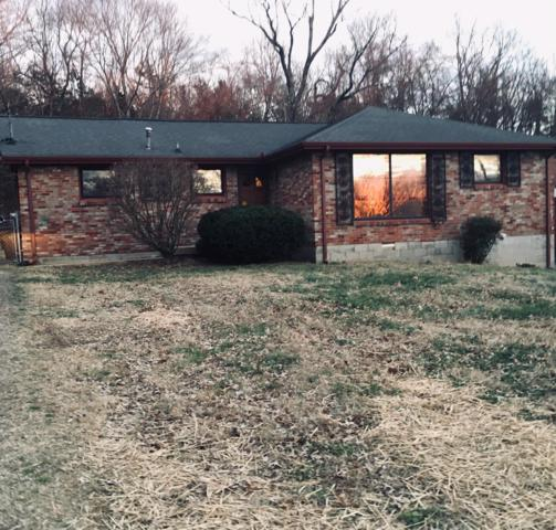 336 Ladybird Dr, Nashville, TN 37217 (MLS #2006781) :: Nashville on the Move