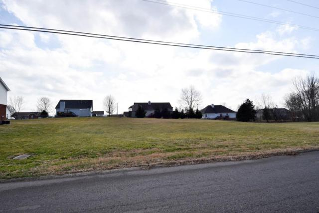 117 Mason St, Portland, TN 37148 (MLS #2009233) :: The Helton Real Estate Group