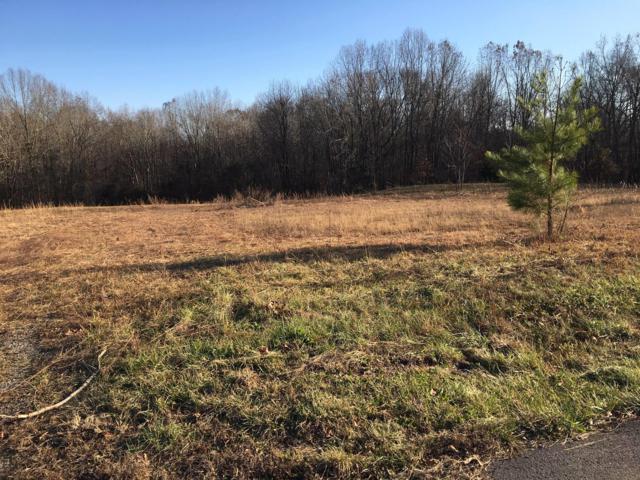 1 Lake Rd, Woodlawn, TN 37191 (MLS #2010235) :: Clarksville Real Estate Inc