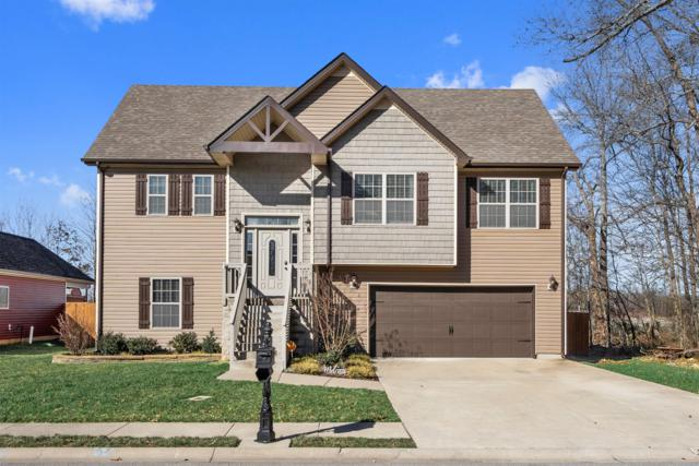 713 Sleek Fox Dr, Clarksville, TN 37040 (MLS #2011883) :: Nashville on the Move