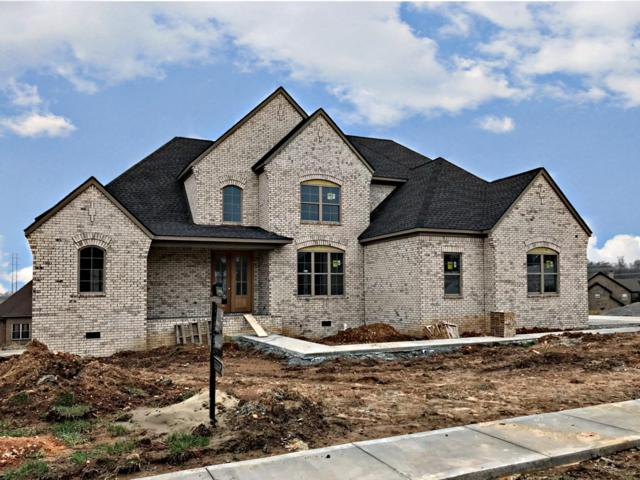 1468 Collins View Way, Clarksville, TN 37043 (MLS #2012015) :: Team Wilson Real Estate Partners