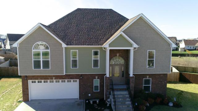 1804 Spring Haven Ct, Clarksville, TN 37042 (MLS #2012278) :: Nashville on the Move