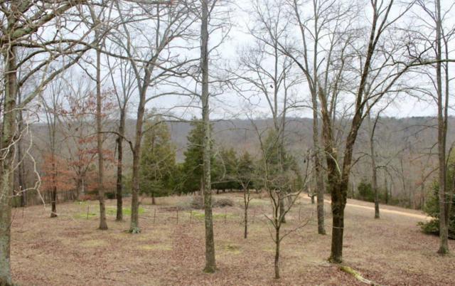 462 Appleton Rd, Five Points, TN 38457 (MLS #2012593) :: FYKES Realty Group
