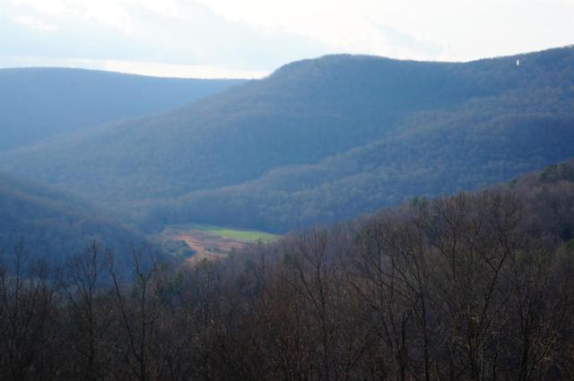 0 Valley View Rd, Pikeville, TN 37367 (MLS #2012889) :: John Jones Real Estate LLC