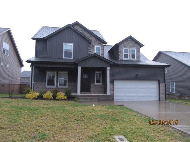 989 Bonellis Ln, Clarksville, TN 37040 (MLS #2013476) :: DeSelms Real Estate