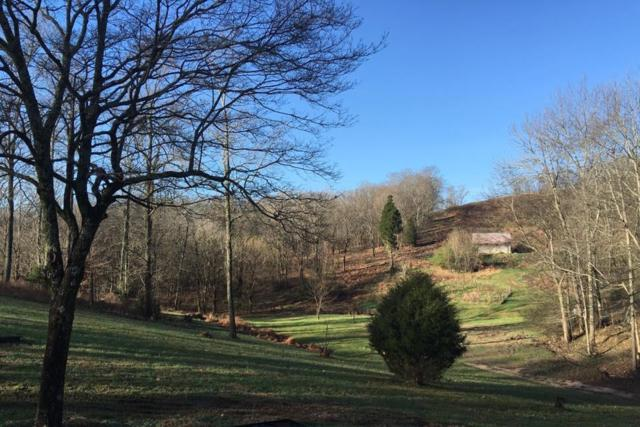 1337 Theta Pike, Columbia, TN 38401 (MLS #2015653) :: The Milam Group at Fridrich & Clark Realty