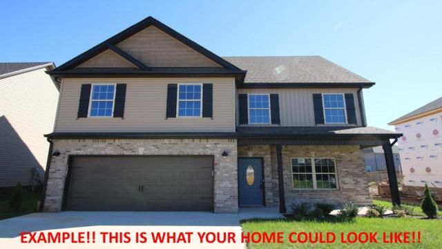282 The Groves At Hearthstone, Clarksville, TN 37040 (MLS #2015865) :: Nashville's Home Hunters