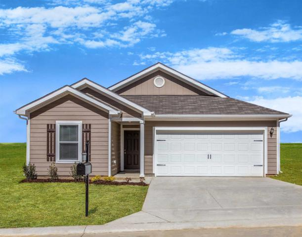 2514 Queen Bee Drive, Columbia, TN 38401 (MLS #2015921) :: REMAX Elite