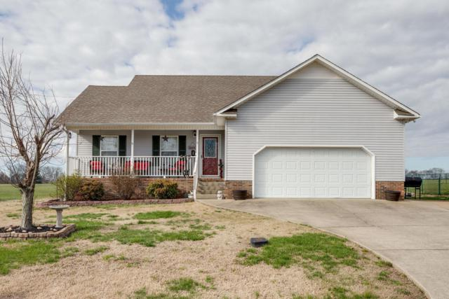 419 Brookside Dr, Mount Pleasant, TN 38474 (MLS #2016252) :: Ashley Claire Real Estate - Benchmark Realty
