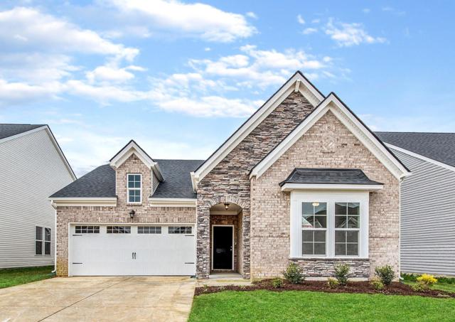469 Nightcap Lane (Lot 182), Murfreesboro, TN 37128 (MLS #2016410) :: HALO Realty