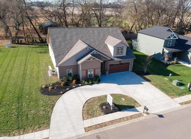 1 Beech Grove, Clarksville, TN 37043 (MLS #RTC2017568) :: John Jones Real Estate LLC