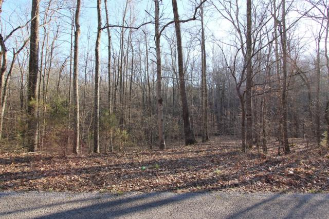 11 Cox Hollow Rd., Dover, TN 37058 (MLS #2018342) :: DeSelms Real Estate
