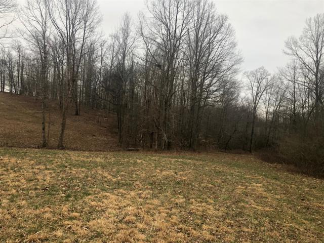 4 W Lick Cr, Primm Springs, TN 38476 (MLS #RTC2018932) :: RE/MAX Choice Properties