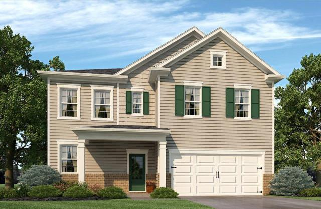521 Hawk Cove Lot #44, Smyrna, TN 37167 (MLS #2019494) :: The Kelton Group