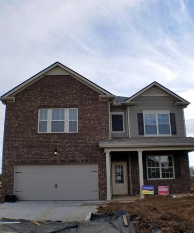 505 Hawk Cove Lot #52, Smyrna, TN 37167 (MLS #2019497) :: The Kelton Group