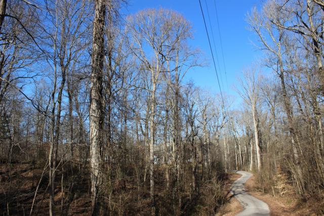 0 Jaybird Drive, Dover, TN 37058 (MLS #2020147) :: Clarksville Real Estate Inc