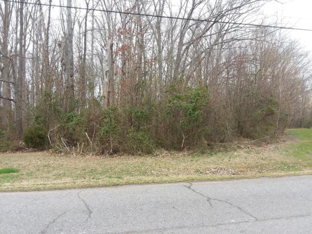 0 Branch Dr, Lawrenceburg, TN 38464 (MLS #RTC2020537) :: Nashville on the Move