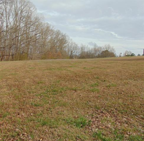 0 Alex Dr, Lawrenceburg, TN 38464 (MLS #2020606) :: John Jones Real Estate LLC