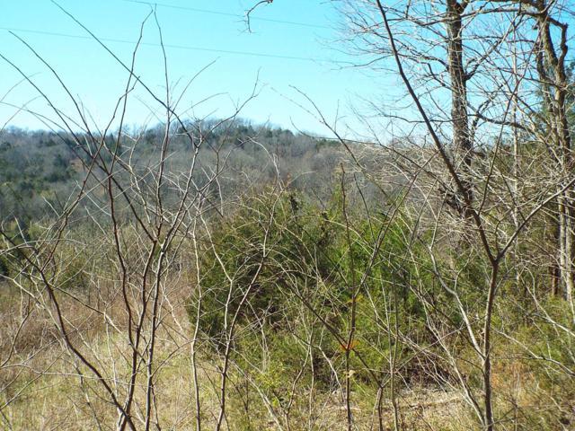0 Hearn Hill Rd, Watertown, TN 37184 (MLS #2021632) :: Oak Street Group