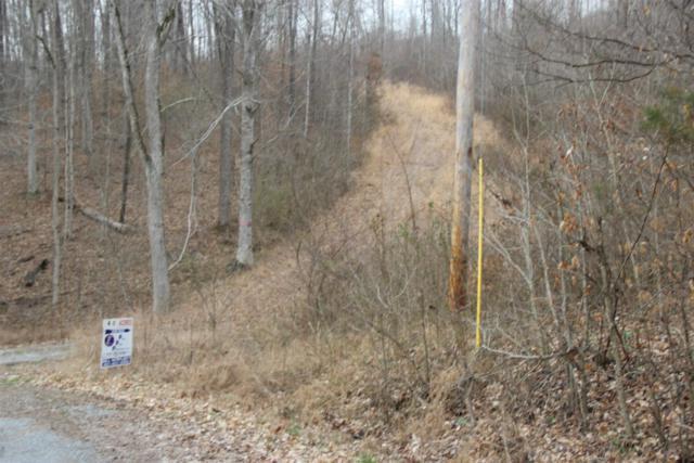 606 Lower Cross Creek Road W, Indian Mound, TN 37079 (MLS #2022400) :: Clarksville Real Estate Inc