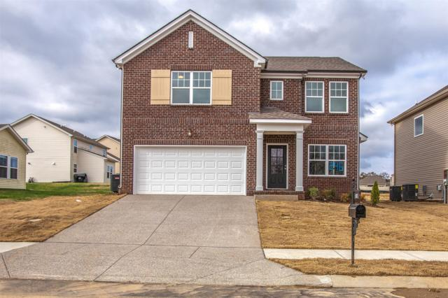 1023 Solomon Ln #246 Summitt, Spring Hill, TN 37174 (MLS #2022990) :: Exit Realty Music City
