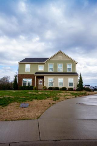 428 River Downs Blvd, Murfreesboro, TN 37128 (MLS #2023534) :: Central Real Estate Partners
