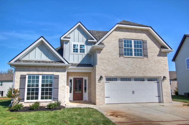 303 Edna May Dr.- #58, Murfreesboro, TN 37128 (MLS #2024433) :: DeSelms Real Estate