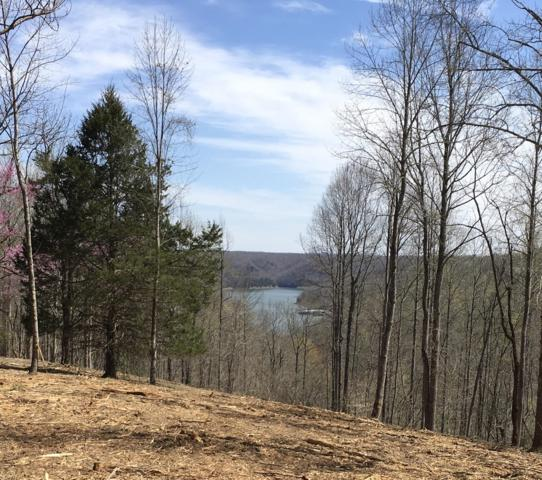 76 Stacey Rd, Smithville, TN 37166 (MLS #2025501) :: FYKES Realty Group
