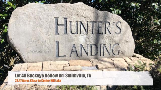 46 Buckeye Hollow Road, Smithville, TN 37166 (MLS #RTC2025862) :: REMAX Elite