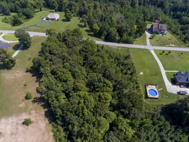 3350 Tarsus Rd, Palmyra, TN 37142 (MLS #2025873) :: Christian Black Team