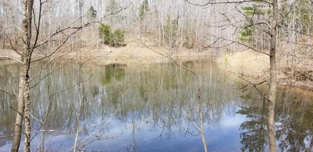 0 Driftwood Dr, Lobelville, TN 37097 (MLS #RTC2026019) :: REMAX Elite