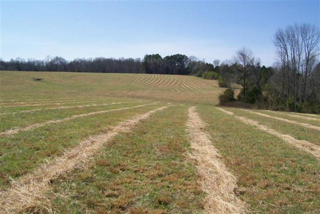 3600 Will Thompson Road, Walling, TN 38587 (MLS #RTC2026059) :: Nashville on the Move