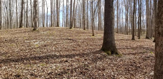 0 Driftwood Dr, Lobelville, TN 37097 (MLS #RTC2026098) :: REMAX Elite