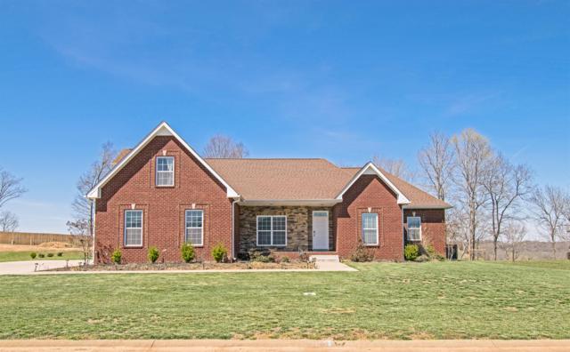954 Red Bluff Way, Adams, TN 37010 (MLS #2026241) :: REMAX Elite