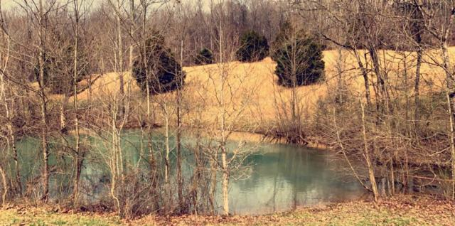3461 Hwy 149, Palmyra, TN 37142 (MLS #2026257) :: Christian Black Team