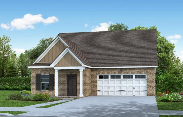 286 Telavera Drive, Lot 75, White House, TN 37188 (MLS #2026599) :: FYKES Realty Group