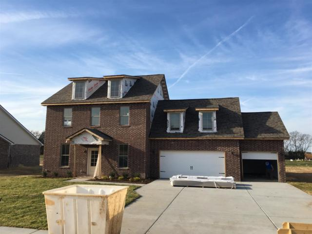 2416 Bull Rush Lane  (Lot 65), Murfreesboro, TN 37128 (MLS #2026805) :: Exit Realty Music City