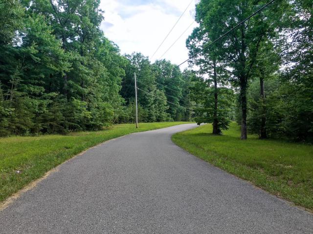 139 Hawks Bluff Rd, Spencer, TN 38585 (MLS #RTC2027134) :: John Jones Real Estate LLC