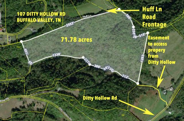 107 Ditty Hollow Rd, Buffalo Valley, TN 38548 (MLS #RTC2027922) :: Village Real Estate