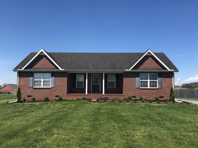 1035 Pinnacle Way, Castalian Springs, TN 37031 (MLS #2028112) :: The Helton Real Estate Group