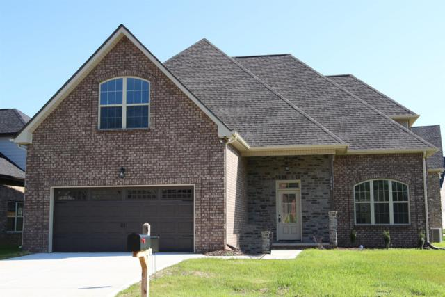 2804 Lightning Bug Dr, Murfreesboro, TN 37129 (MLS #RTC2028263) :: Nashville on the Move