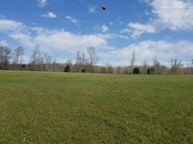 989 Britton Springs Rd, Clarksville, TN 37042 (MLS #RTC2028720) :: Christian Black Team