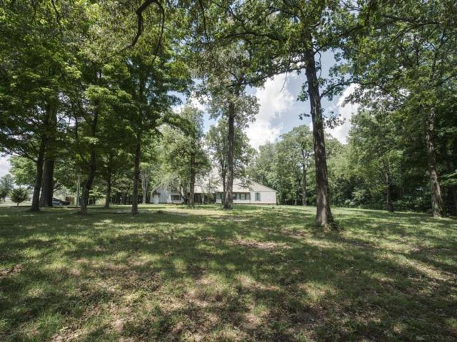 5631 Highway 161, Springfield, TN 37172 (MLS #RTC2029016) :: The Kelton Group