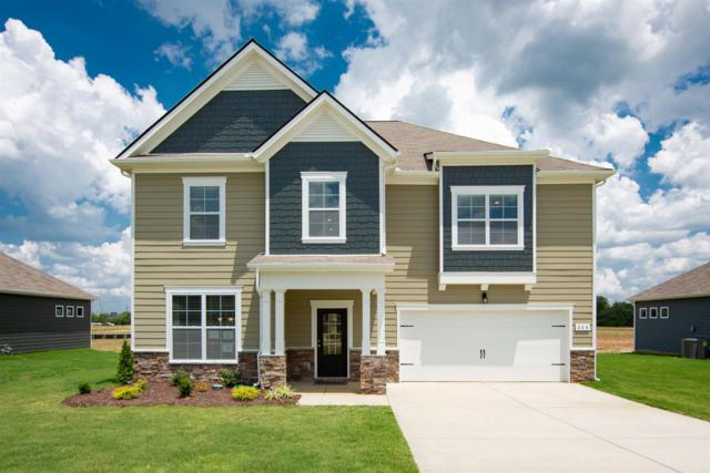 205 Princeton Drive, Lot 46, Lebanon, TN 37087 (MLS #2029472) :: The Kelton Group