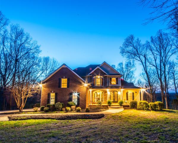 2945 Old Clarksville Spgfld Rd, Adams, TN 37010 (MLS #2029698) :: FYKES Realty Group