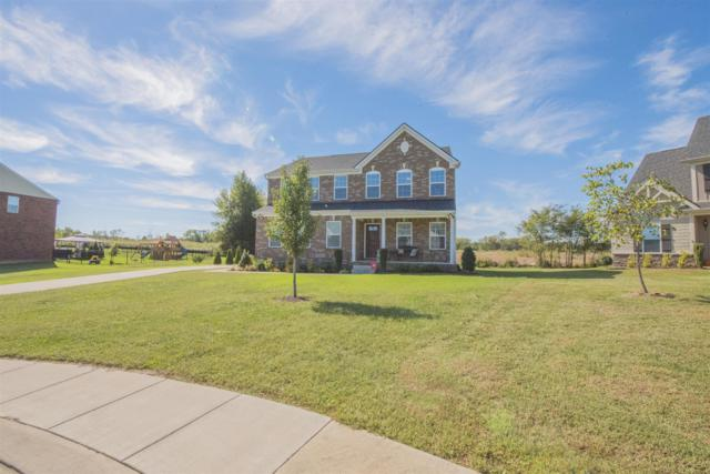423 River Downs Blvd, Murfreesboro, TN 37128 (MLS #2030389) :: RE/MAX Choice Properties