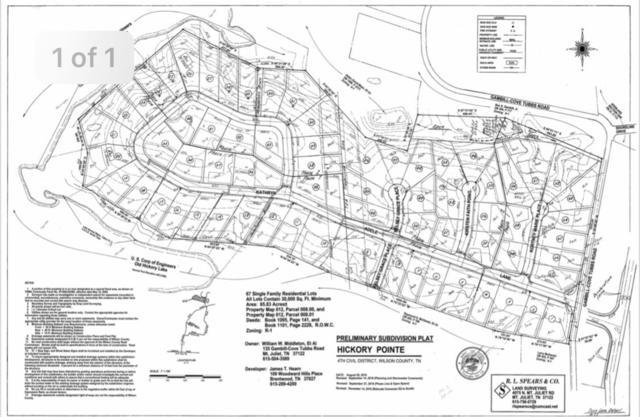135 Gambill-Cove Tubbs Rd, Mount Juliet, TN 37122 (MLS #2031482) :: DeSelms Real Estate