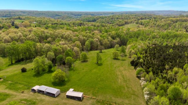 560 Big Spring Hollow Rd, Pulaski, TN 38478 (MLS #2031609) :: Ashley Claire Real Estate - Benchmark Realty