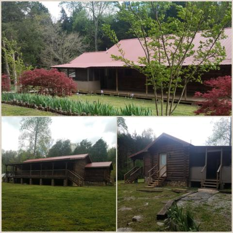 4232 Sinking Cove Rd, Sherwood, TN 37376 (MLS #2031968) :: Christian Black Team